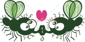 Funny flies kissing and falling in love - illustratoons