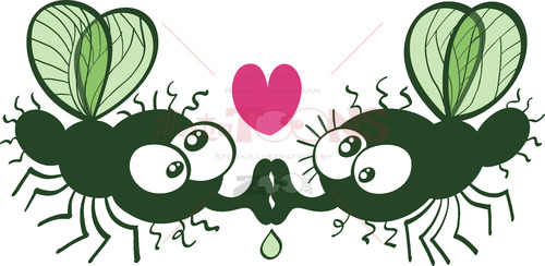 Funny flies kissing and falling in love 6020