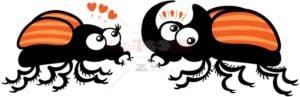 Couple of rhinoceros beetles falling in love - illustratoons