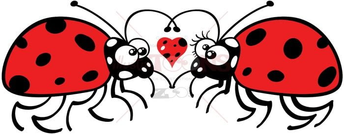Cute ladybugs tenderly falling in love - illustratoons
