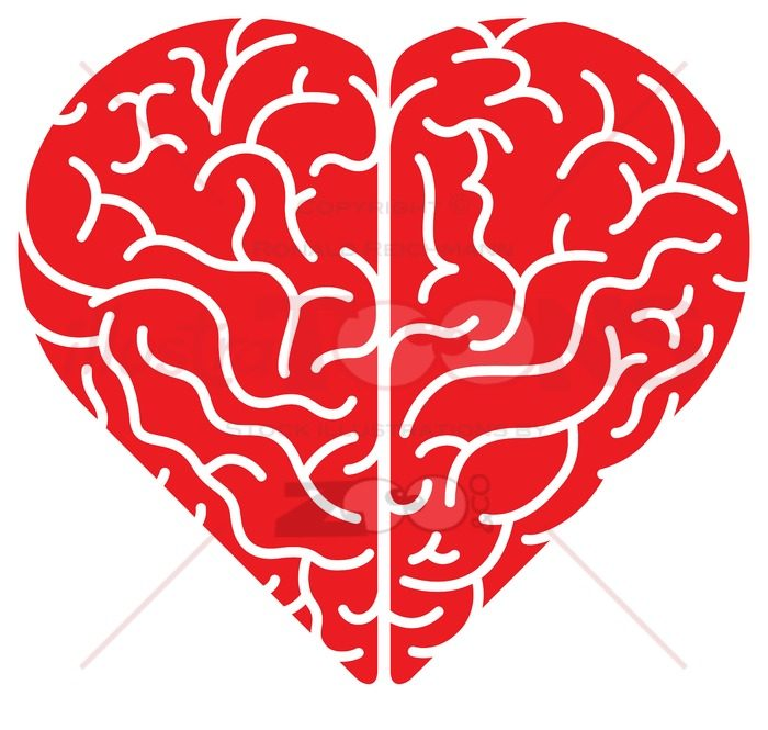 Cartoon red heart shaped brain in top view - illustratoons