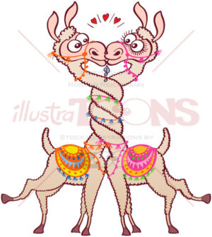 Llamas in love intertwining necks and kissing passionately - illustratoons