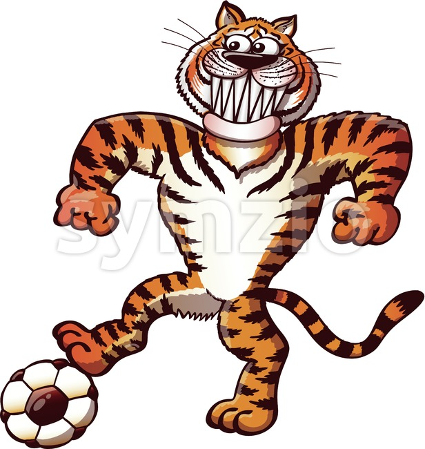 Soccer tiger stepping on a ball Stock Vector