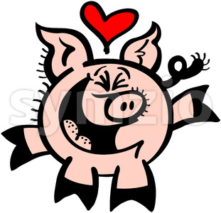 Enthusiastic pig falling head over heels in love Stock Vector