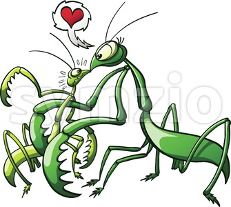 Praying mantis forcing her mate to love Stock Vector
