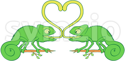 Chameleons sticky love Stock Vector