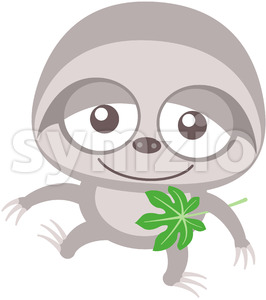 Baby sloth walking unsteadily and holding a Cecropia leaf Stock Vector