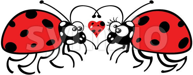 Cute ladybugs tenderly falling in love Stock Vector