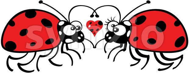 Cute ladybugs tenderly falling in love Stock Vector