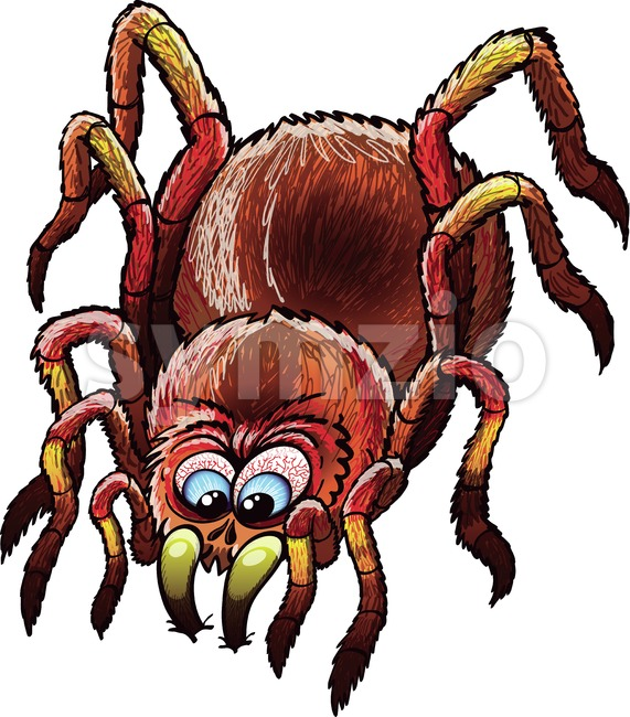 Scary tarantula sinking its fangs into a surface Stock Vector